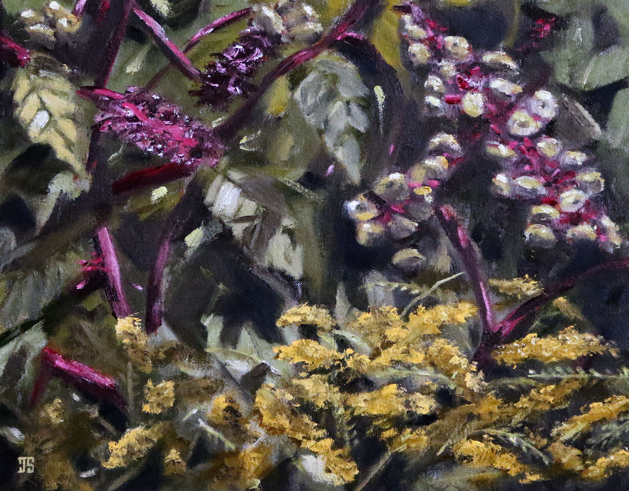 Pokeweed Berries and Goldenrod by Jeffrey Dale Starr