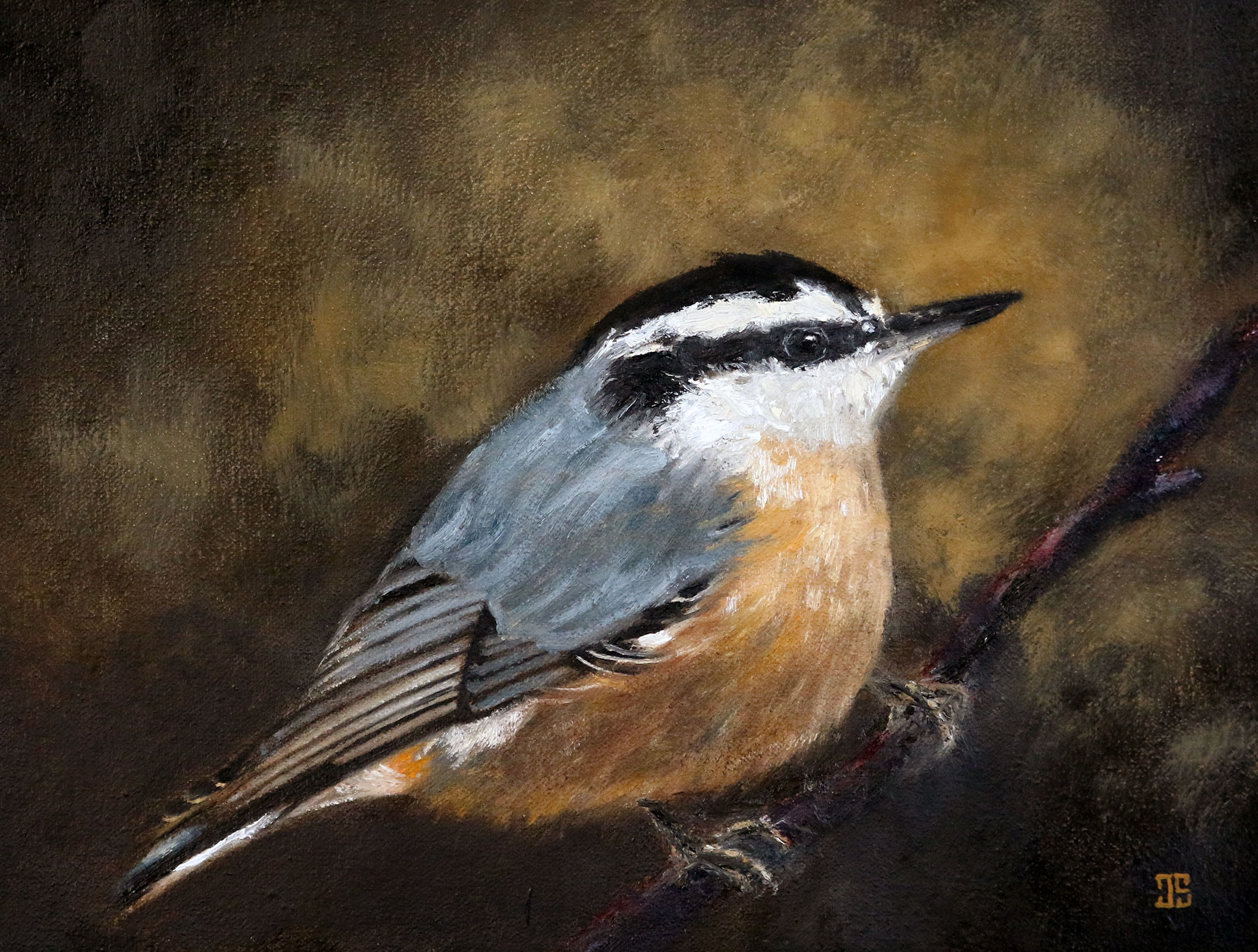 "Oil painting ""Birds of Cape Cod: Red-Breasted Nuthatch"" by Jeffrey Dale Starr"